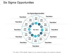 Six Sigma Opportunities Ppt Powerpoint Presentation Influencers Cpb