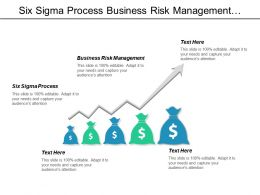 Six Sigma Process Business Risk Management Quality Planning Cpb