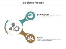 Six Sigma Process Ppt Powerpoint Presentation Portfolio Slide Download Cpb