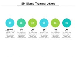 Six Sigma Training Levels Ppt Powerpoint Presentation Slides Download Cpb