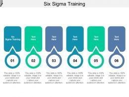 Six Sigma Training Ppt Powerpoint Presentation Styles Infographics Cpb