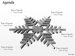 Six Staged Snowflakes Diagram For Agenda 0214