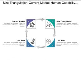 Size Triangulation Current Market Human Capability Application Maintenance