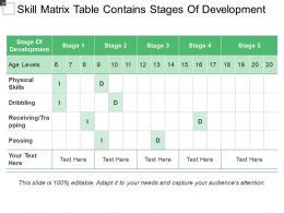 Skill Matrix Table Contains Stages Of Development