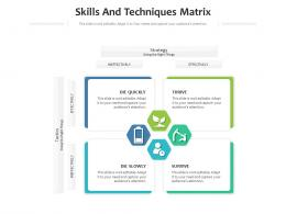 Skills And Techniques Matrix Infographic Template