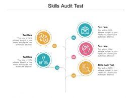 Skills Audit Test Ppt Powerpoint Presentation Portfolio Infographics Cpb