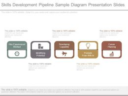 Skills Development Pipeline Sample Diagram Presentation Slides