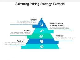 Skimming Pricing Strategy Example Ppt Powerpoint Presentation Gallery Microsoft Cpb