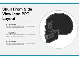 Skull From Side View Icon Ppt Layout