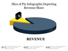 Slice Of Pie Infographic Depicting Revenue Share