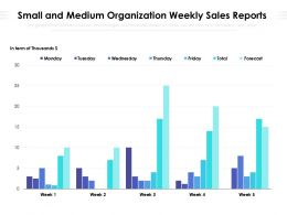 Small And Medium Organization Weekly Sales Reports
