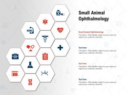 Small Animal Ophthalmology Ppt Powerpoint Presentation Pictures Slides