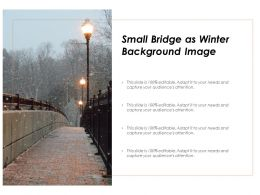 Small Bridge As Winter Background Image