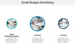 Small Budget Advertising Ppt Powerpoint Presentation Infographics Format Ideas Cpb