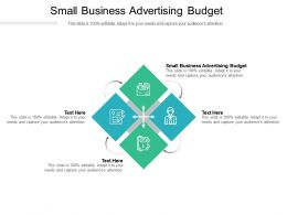 Small Business Advertising Budget Ppt Powerpoint Presentation Styles Backgrounds Cpb