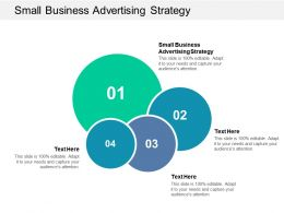 Small Business Advertising Strategy Ppt Powerpoint Presentation Ideas Cpb