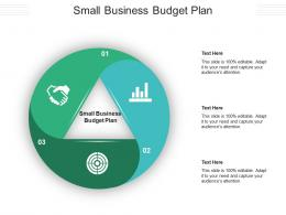 Small Business Budget Plan Ppt Powerpoint Presentation Summary Format Cpb