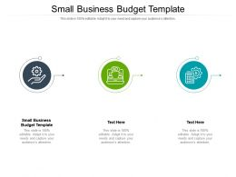 Small Business Budget Template Ppt Powerpoint Presentation Layouts Slide Download Cpb
