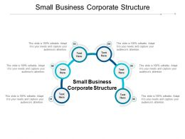 Small Business Corporate Structure Ppt Powerpoint Presentation Professional Cpb