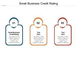 Small Business Credit Rating Ppt Powerpoint Presentation Gallery File Formats Cpb