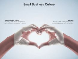 Small Business Culture Ppt Powerpoint Presentation Portfolio Ideas Cpb