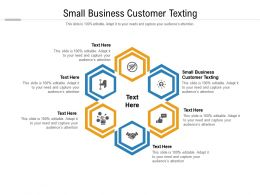 Small Business Customer Texting Ppt Powerpoint Presentation Inspiration Graphics Cpb