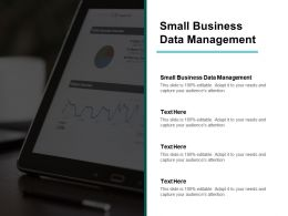 Small Business Data Management Ppt Powerpoint Presentation Inspiration Display Cpb