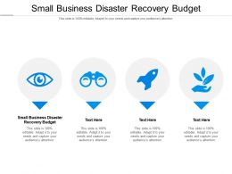 Small Business Disaster Recovery Budget Ppt Powerpoint Presentation Gallery Samples Cpb