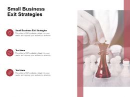 Small Business Exit Strategies Ppt Powerpoint Presentation Layouts Files Cpb