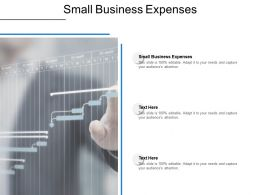 Small Business Expenses Ppt Powerpoint Presentation Portfolio Influencers Cpb