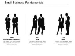 Small Business Fundamentals Ppt Powerpoint Presentation Portfolio Graphics Template Cpb
