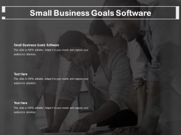 Small Business Goals Software Ppt Powerpoint Presentation Portfolio Backgrounds Cpb
