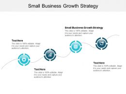 Small Business Growth Strategy Ppt Powerpoint Presentation Visual Aids Cpb