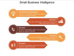 Small Business Intelligence Ppt Powerpoint Presentation Model Rules Cpb