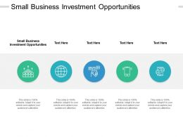 Small Business Investment Opportunities Ppt Powerpoint Presentation Outline Cpb