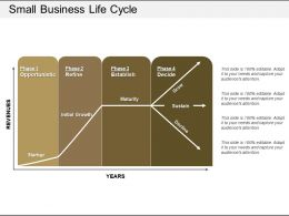 Small Business Life Cycle Powerpoint Slide Rules