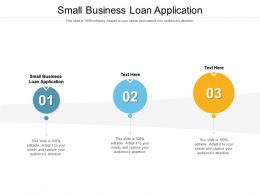 Small Business Loan Application Ppt Powerpoint Presentation Pictures Skills Cpb
