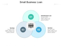 Small Business Loan Ppt Powerpoint Presentation Inspiration Graphics Example Cpb