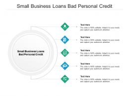Small Business Loans Bad Personal Credit Ppt Powerpoint Presentation Outline Templates Cpb