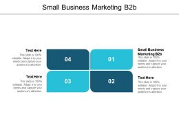 Small Business Marketing B2B Ppt Powerpoint Presentation Styles Elements Cpb