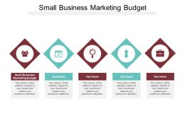 Small Business Marketing Budget Ppt Powerpoint Presentation Slides Show Cpb