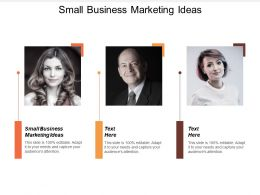 Small Business Marketing Ideas Ppt Powerpoint Presentation Infographics Outline Cpb