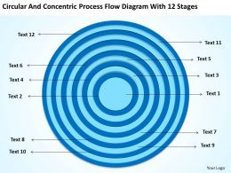 Small Business Network Diagram And Concentric Process Flow With 12 Stages Powerpoint Slides