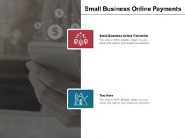 Small Business Online Payments Ppt Powerpoint Presentation Inspiration Example Topics Cpb