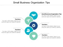 Small Business Organization Tips Ppt Powerpoint Presentation Slides Samples Cpb