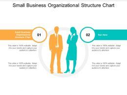 Small Business Organizational Structure Chart Ppt Powerpoint Presentation Icon Good Cpb