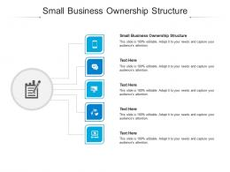 Small Business Ownership Structure Ppt Powerpoint Presentation Infographic Template Cpb