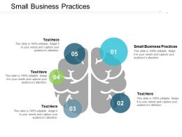Small Business Practices Ppt Powerpoint Presentation Portfolio Graphics Tutorials Cpb