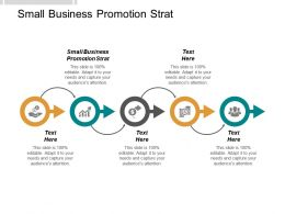 Small Business Promotion Strat Ppt Powerpoint Presentation Gallery Clipart Cpb