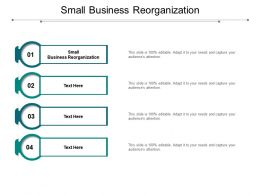 Small Business Reorganization Ppt Powerpoint Presentation Pictures Graphics Cpb